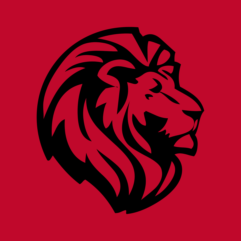 VN Lion Head Logo.png