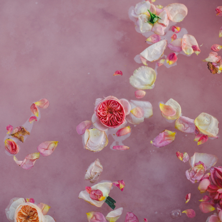 (c)evelyneslavaphotography2014 Pink Salt  (103).jpg