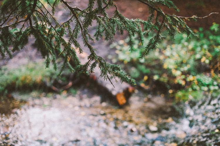 (c)evelyneslavaphotography ramblinrose cookout (8).jpg