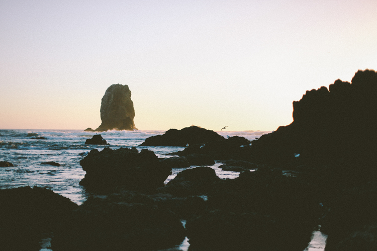 oregon (c)evelyneslavaphotography 8016713080 (42).jpg