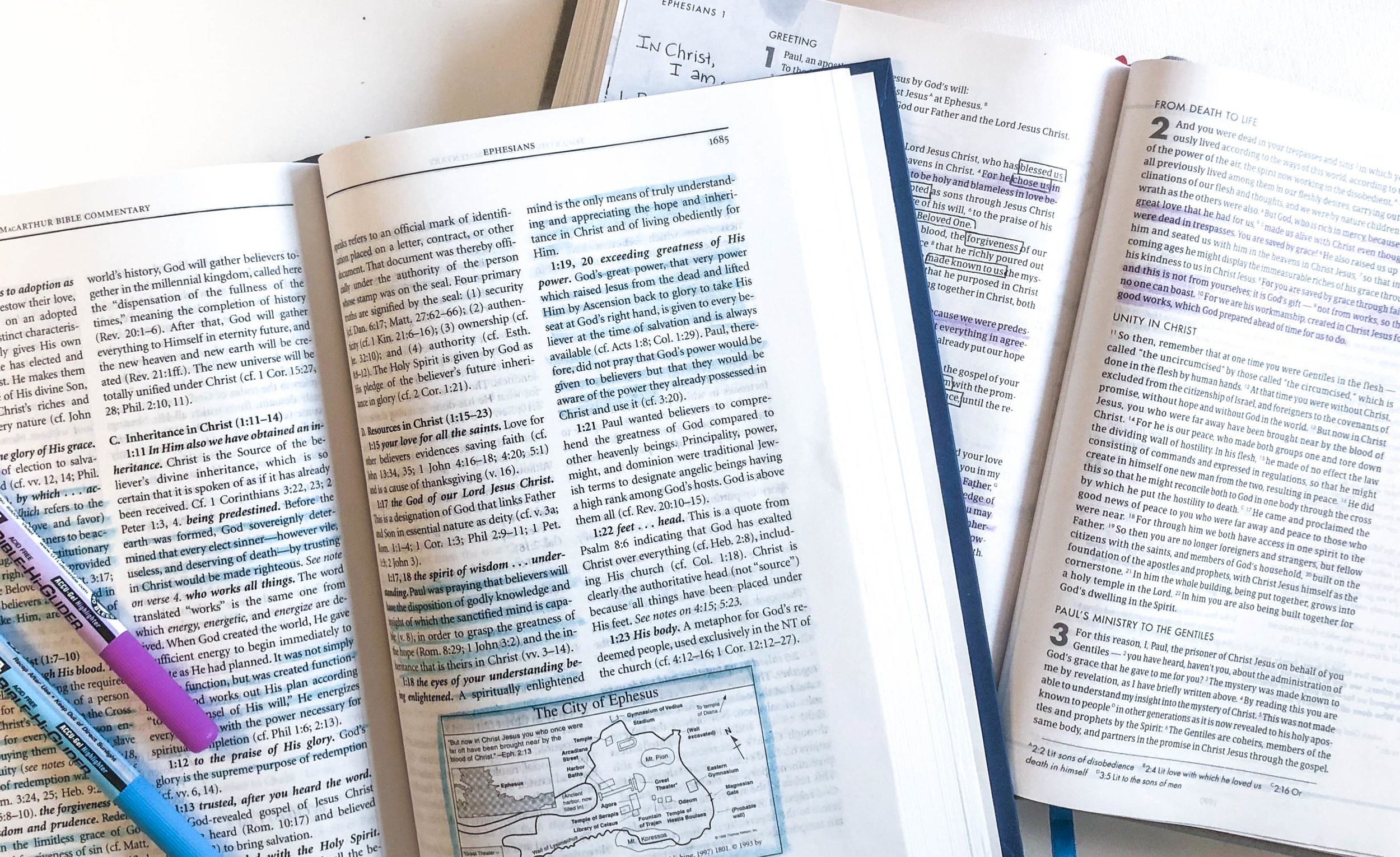 The Macarthur bible commentary  with the she reads truth bible.