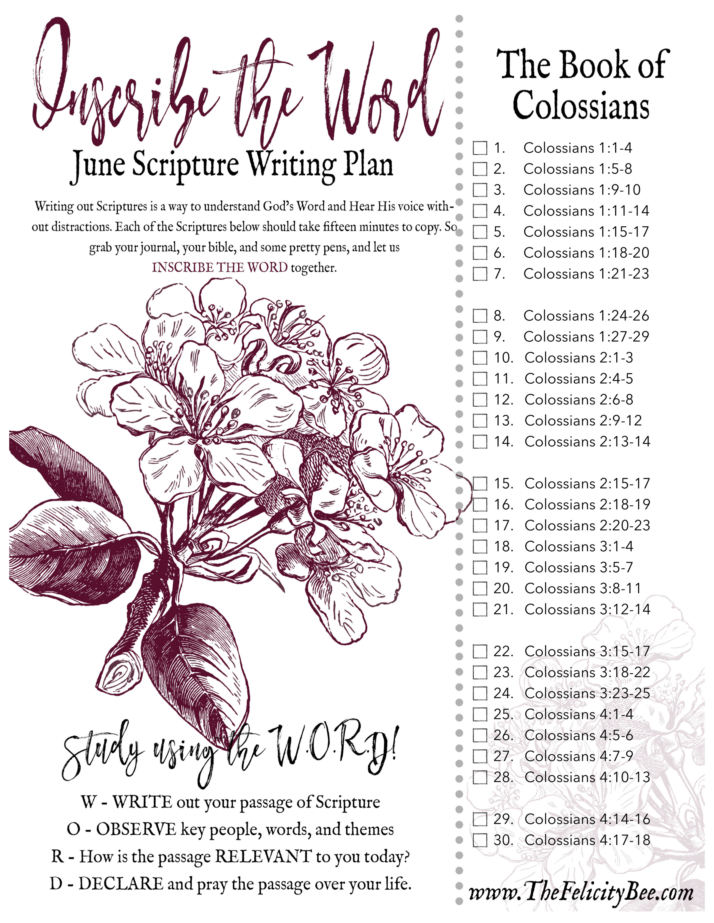 Join us this June as we Inscribe the BOOK OF COLOSSIANS for this months Scripture Writing Plan. A wonderful plan to remind us of Christ's sovereignty and sufficiency in our lives!