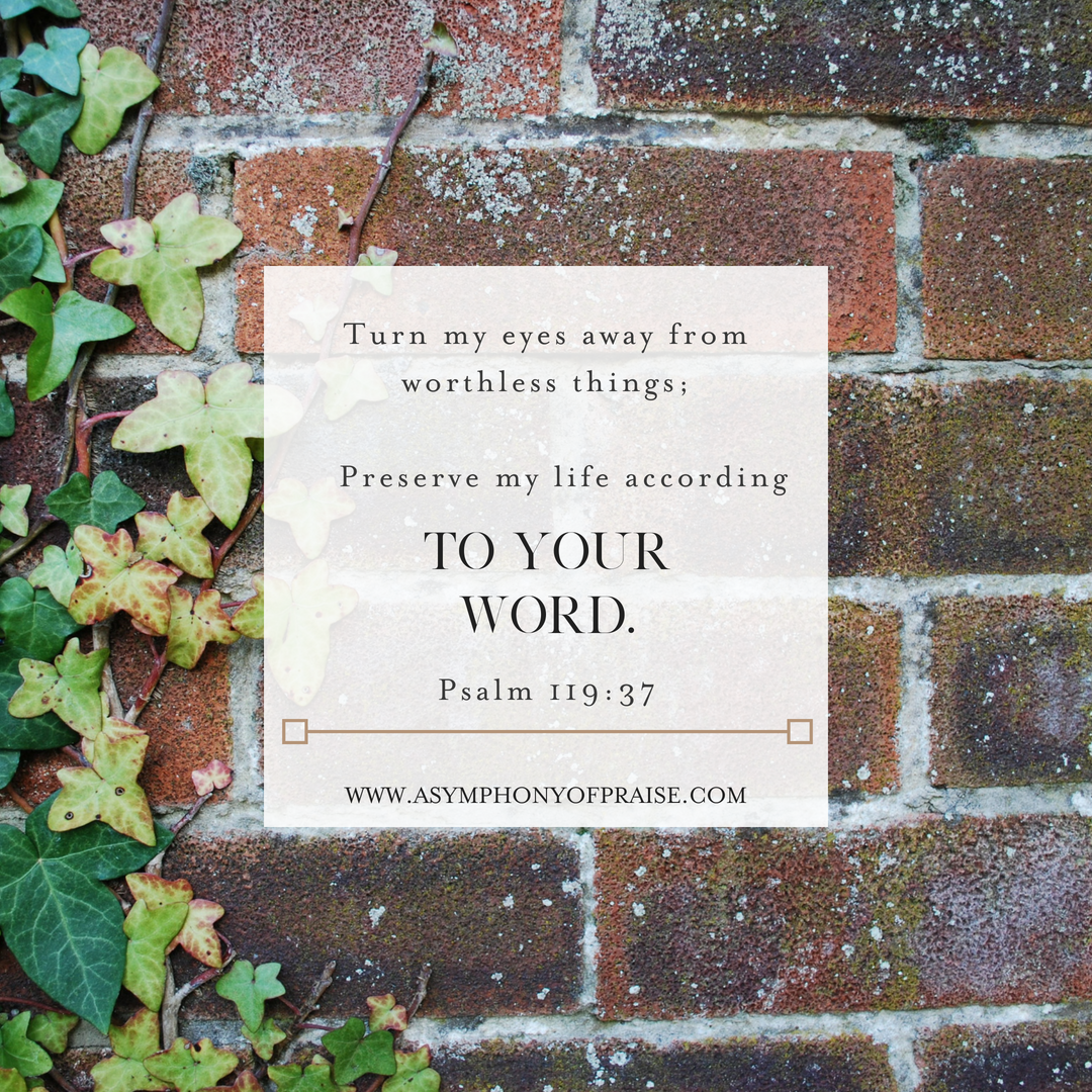 Sometimes it is hard to focus on the good things in our lives. We tend to look at the ruins. Click here to learn how to take your eyes off of ruin and place them on NEW LIFE.