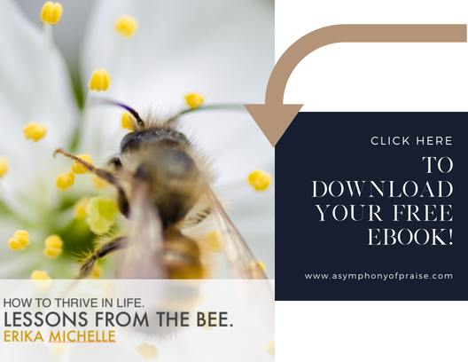 How to Thrive in Life. Lessons from The Bee. Free Ebook.