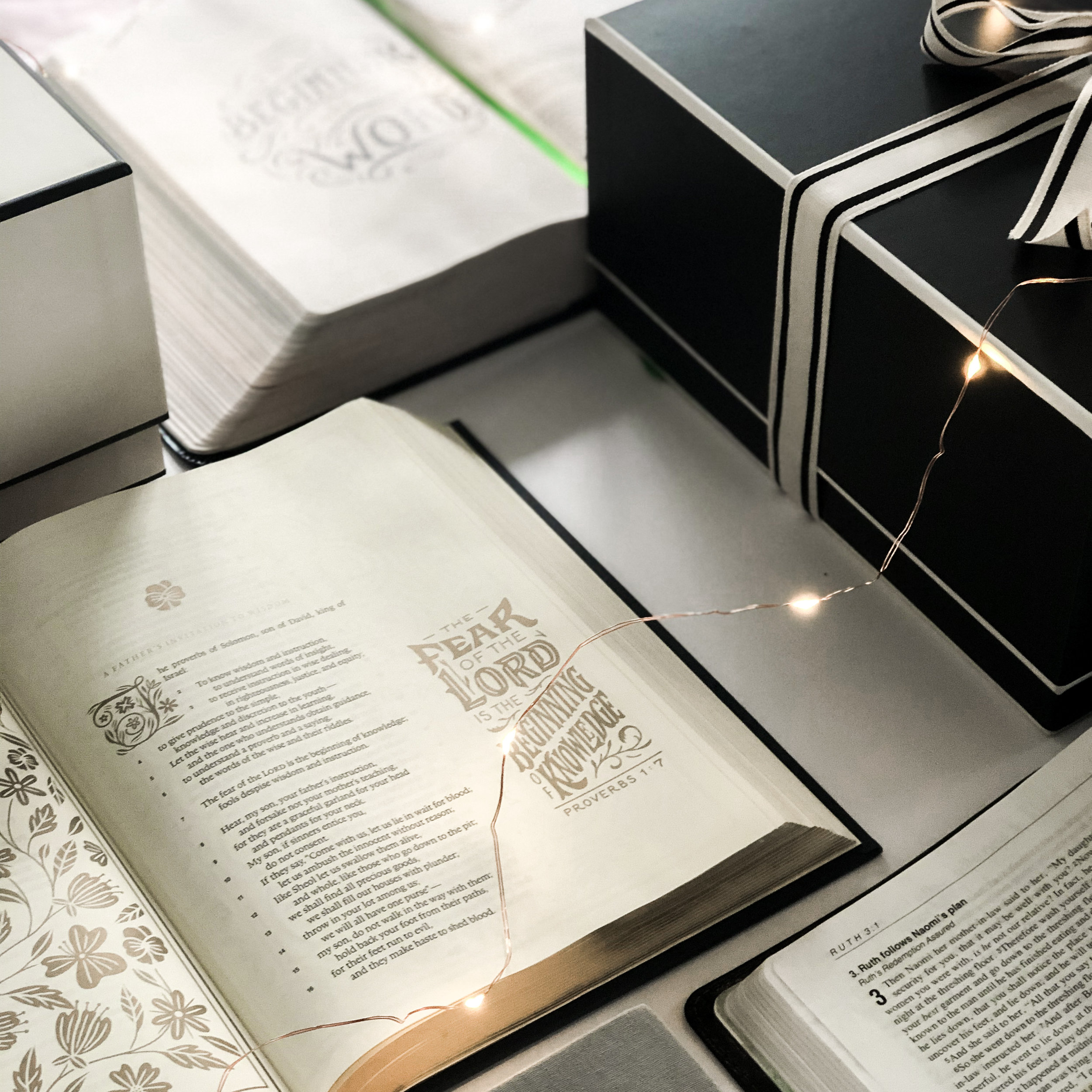 The Illuminated Bible English Standard Version is a gorgeous Bible with plenty of room to journal and take notes. It is absolutely beautiful. I have the navy blue hardcover (and I just bought my sister the green for Christmas. SHHH!) This is my favorite ESV Bible!