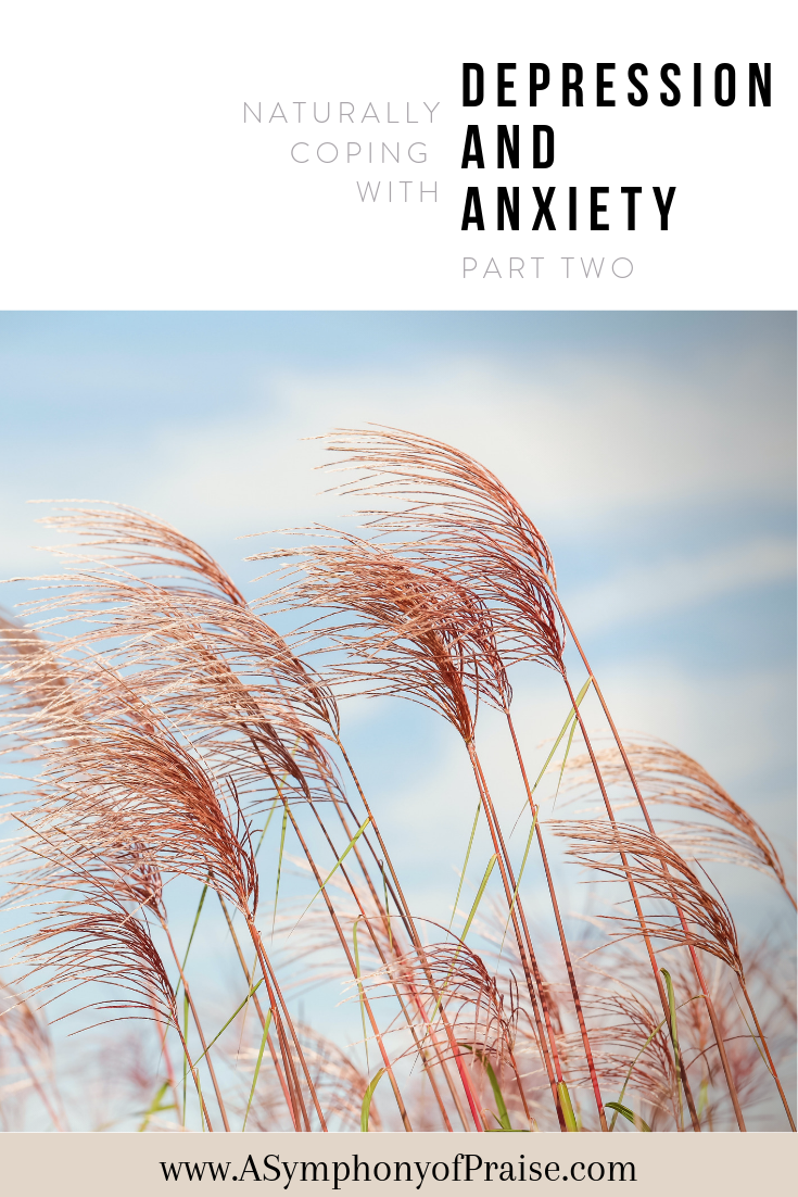 I was diagnosed with Major Depressive Disorder, Adjustment Disorder, Generalized Anxiety Disorder, and PMDD.  I began taking antidepressants that only made things worse. I detoxed off of the medications, and began to seek God's Word for guidance, healing, and deliverance. This is my journey to healing depression and anxiety naturally. These are twelve steps that I have taken to help heal and recover form mental illness.