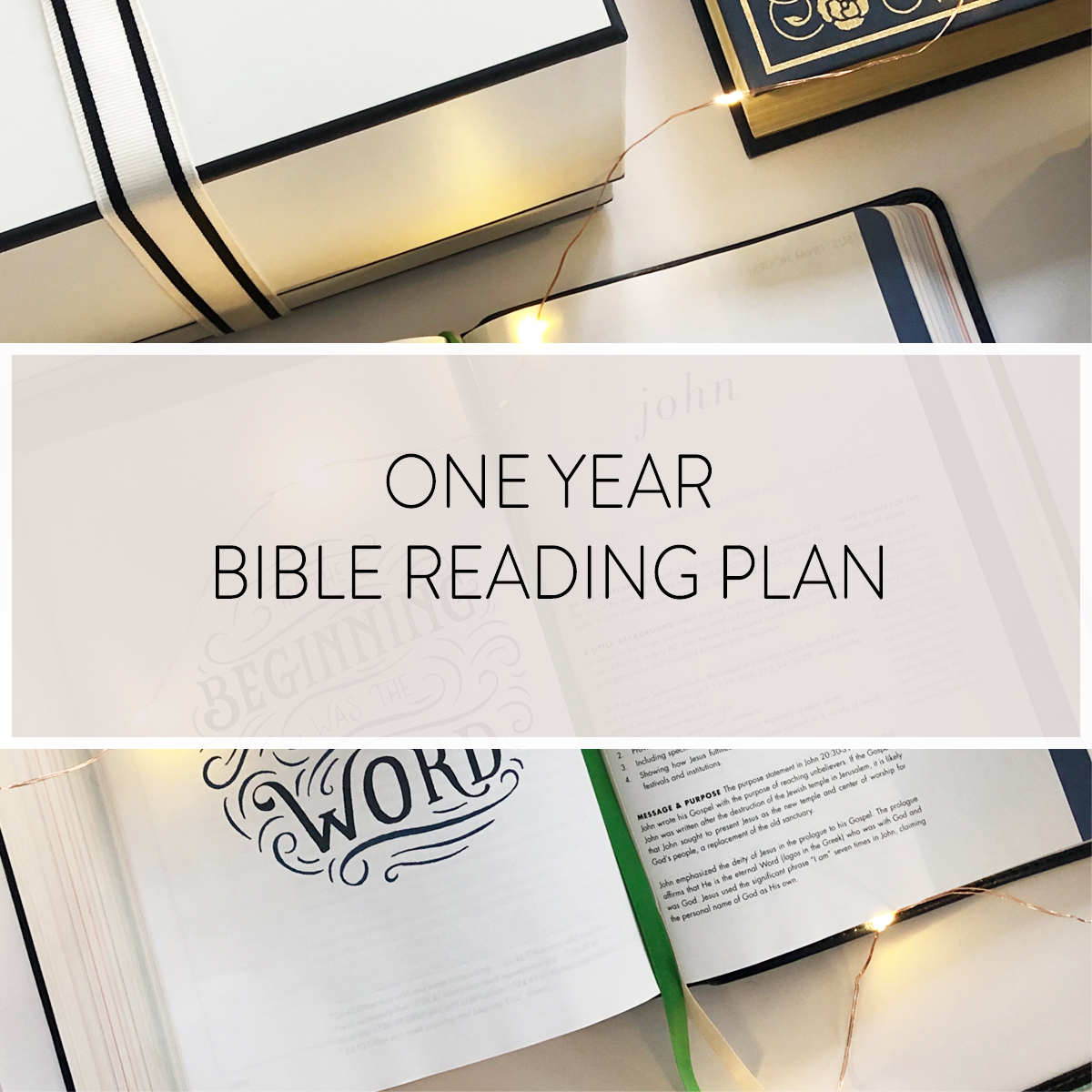 Looking for a One Year Bible Reading Plan? We've got one for you!