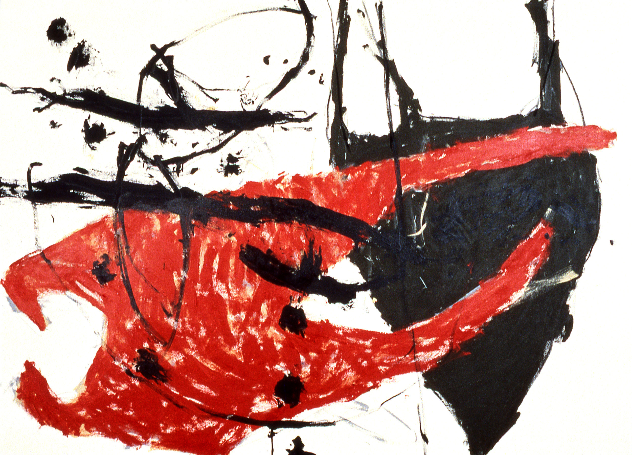 "toro    50""X70  ""    ACRYLIC and charcoal on canvas    1998"