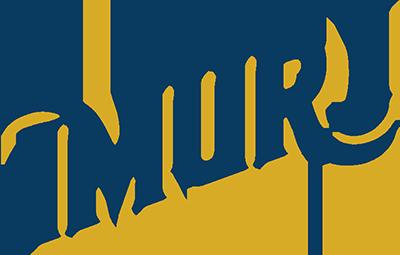 Imurj-logos-final_2 color-sm.png