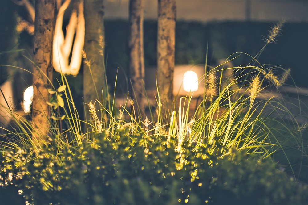 lightscape1.jpg