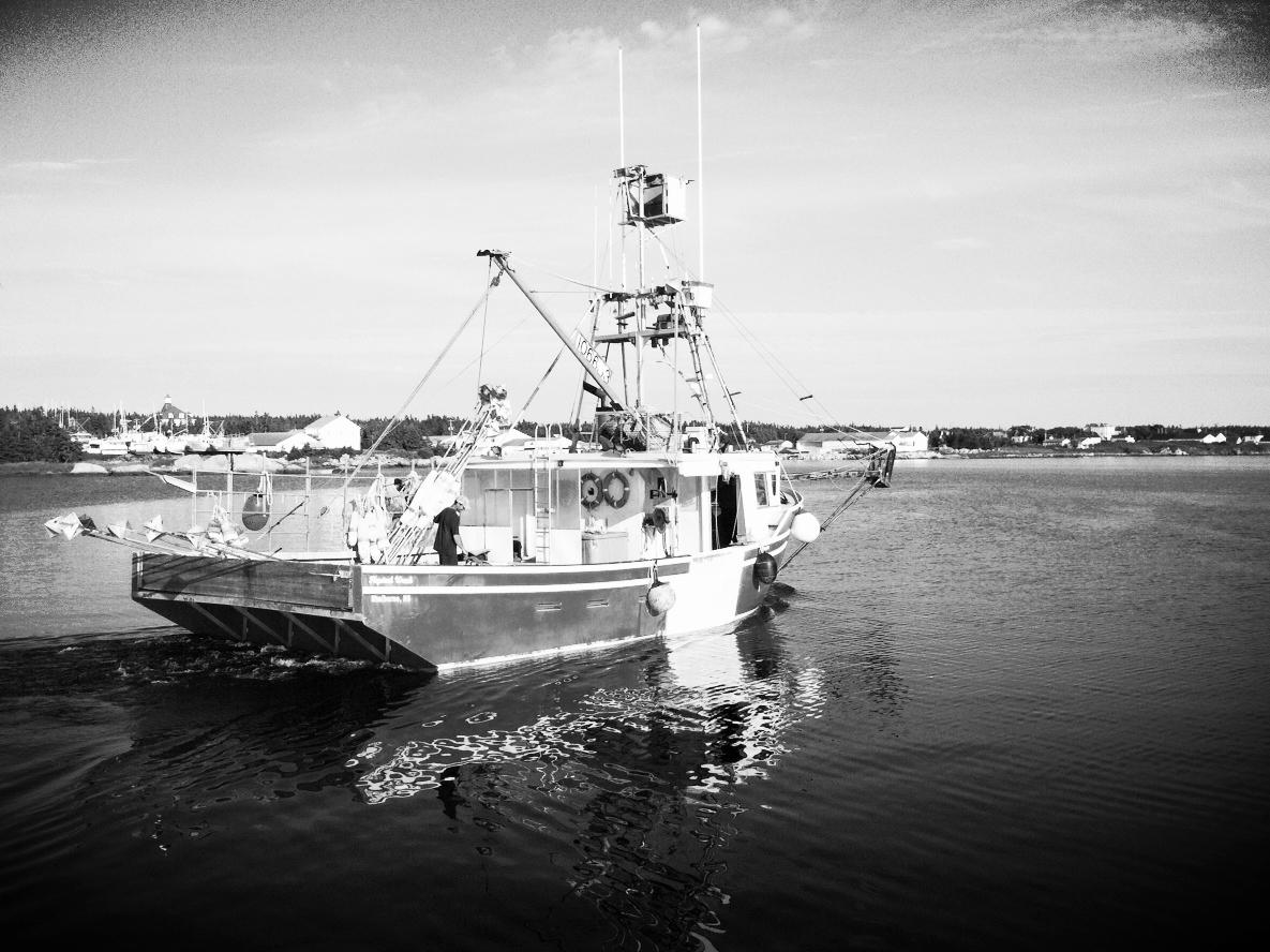 boatsgoingout.JPG