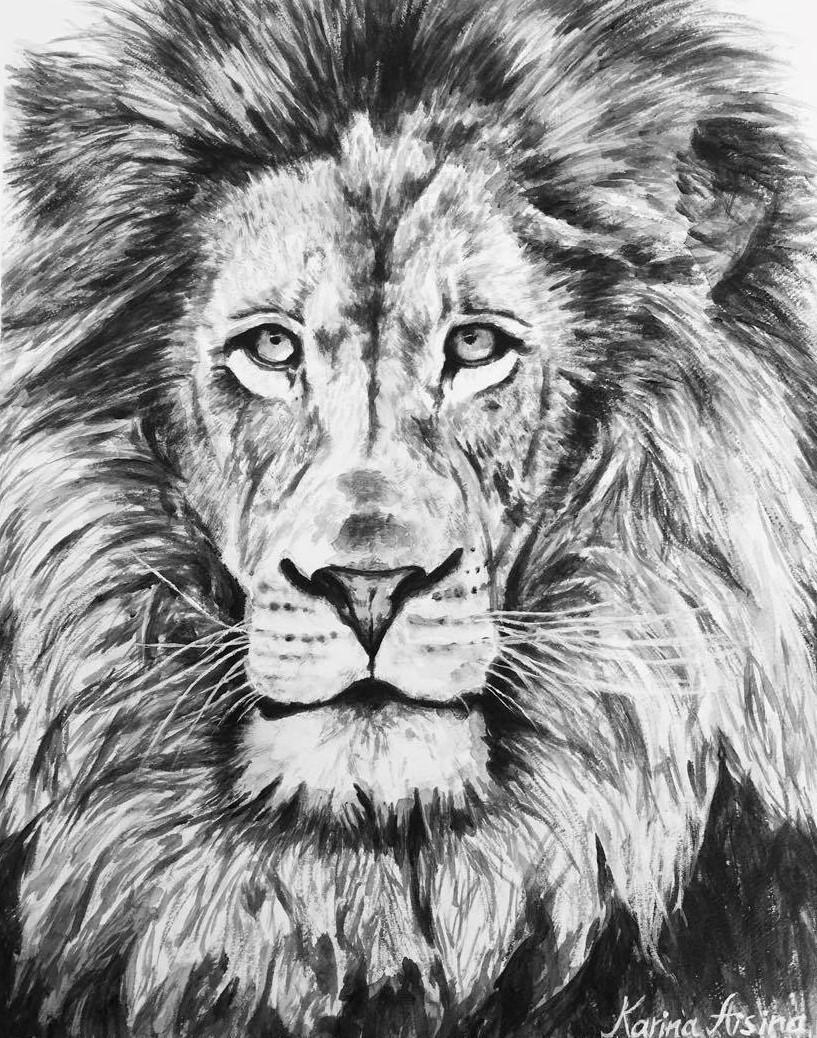 lion.DPI_300.jpg