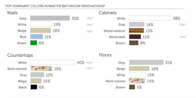 Bathroom Renovation color choices.JPG