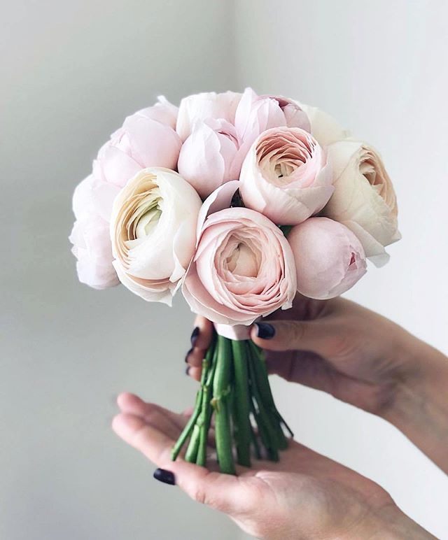 Again it's in the 30's here today so peonies ♥️ who doesn't love peonies? Regram: @weddingforward