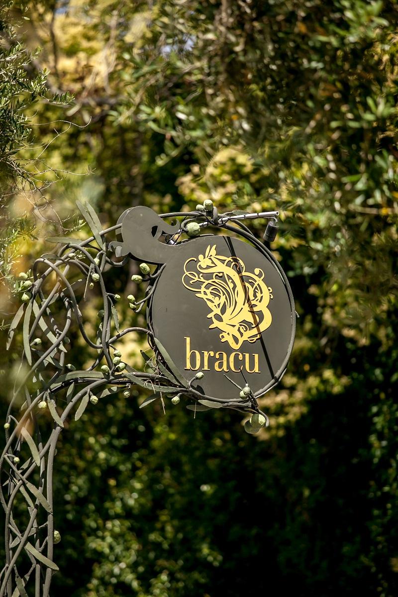 Bracu-6928.jpg