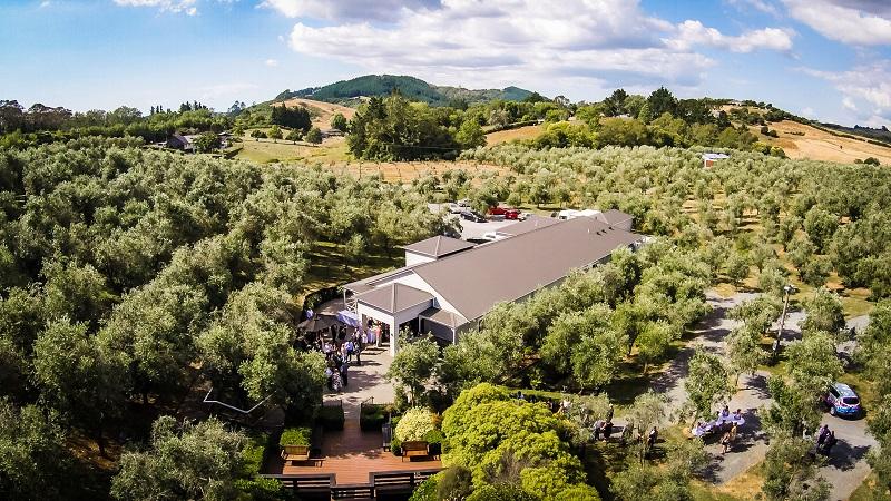 Aerial Pavilion.jpg