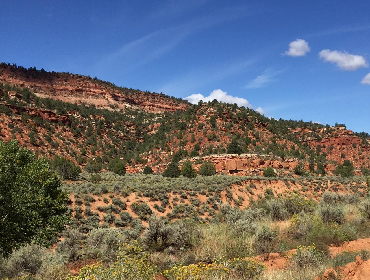 Hog Canyon.jpeg