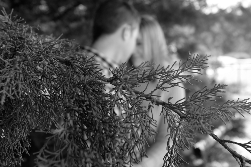 Engagement Shoot-42.jpg