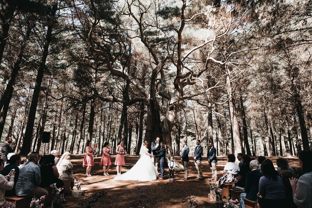 Adealide Wedding Photographer-49.jpg