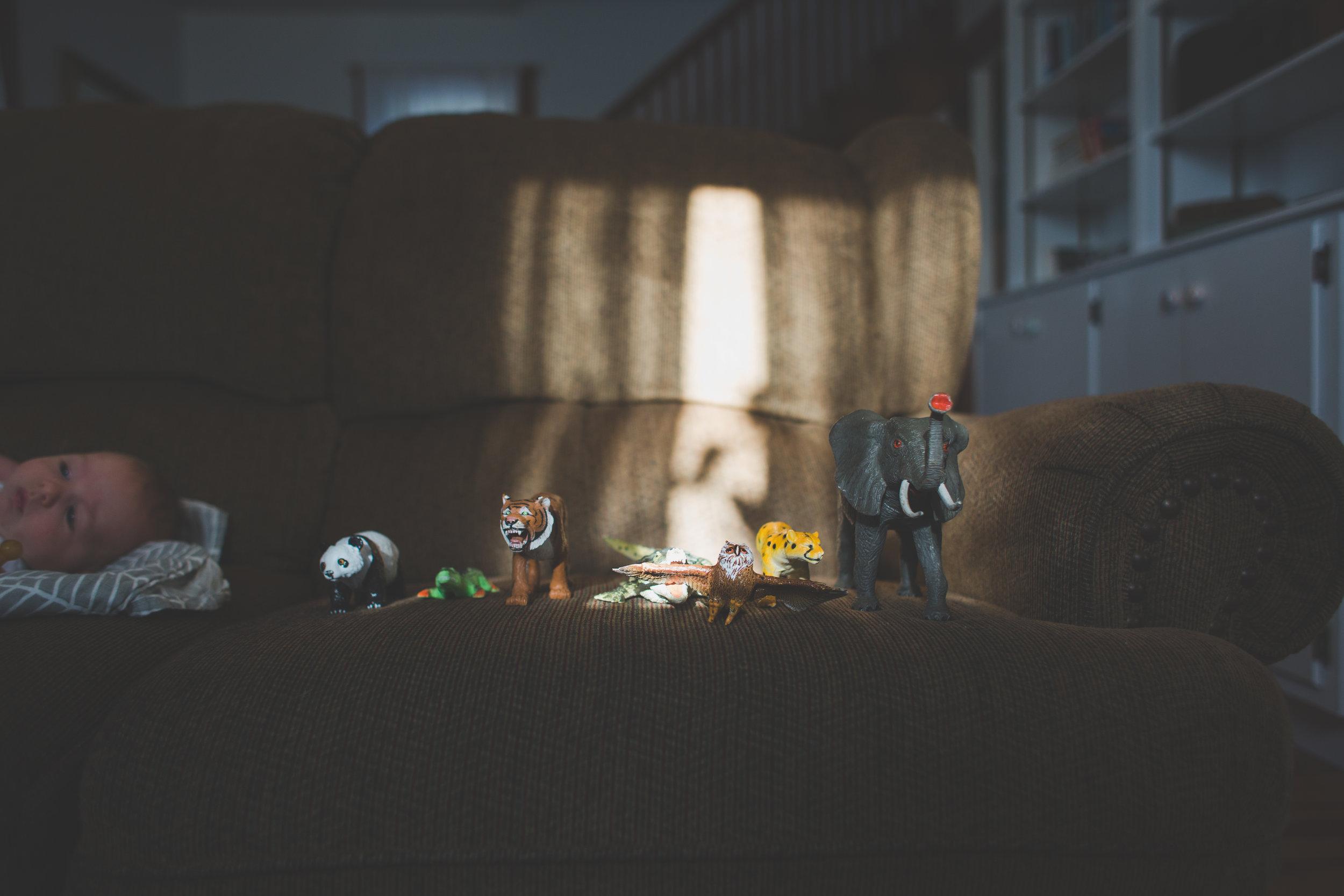 baerfamily-0420.jpg