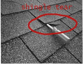 shingle_tear_2_a.jpg