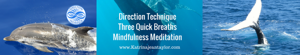 New, first time ever, Katrina Jean Taylor-the founder of the Direction Technique, brings to you the healing sounds of the Dolphins & Whales using the Three Quick Breaths, Direction Technique Mindfulness Meditations