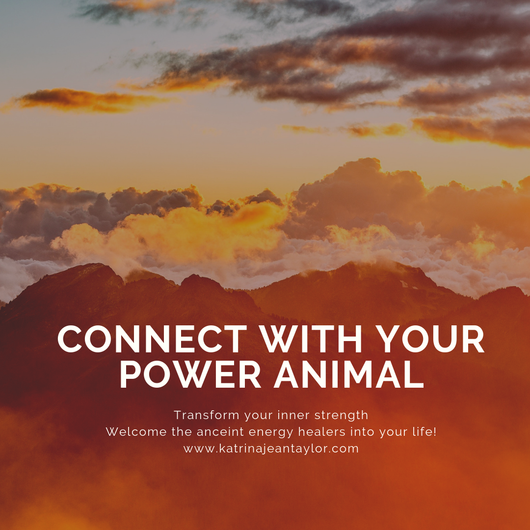 Connect With Power Animal.png