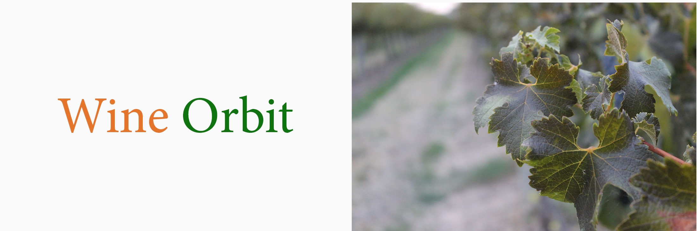 Win eorbit logo 2.jpg