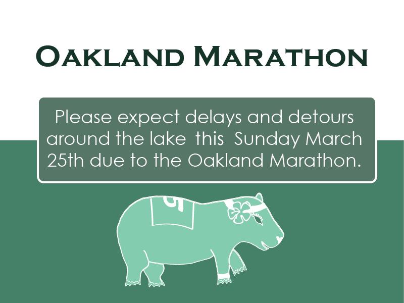 Oakland Marathon 3-23-18.png