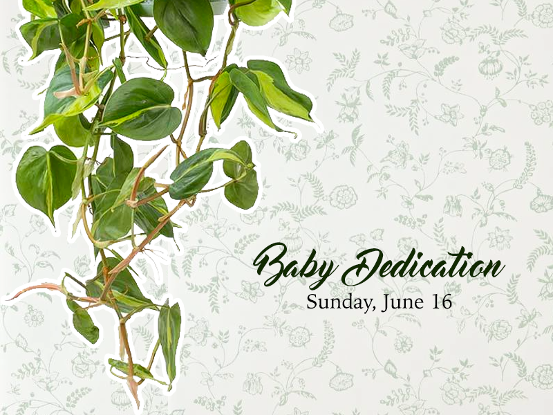 20190531-baby-dedication.png