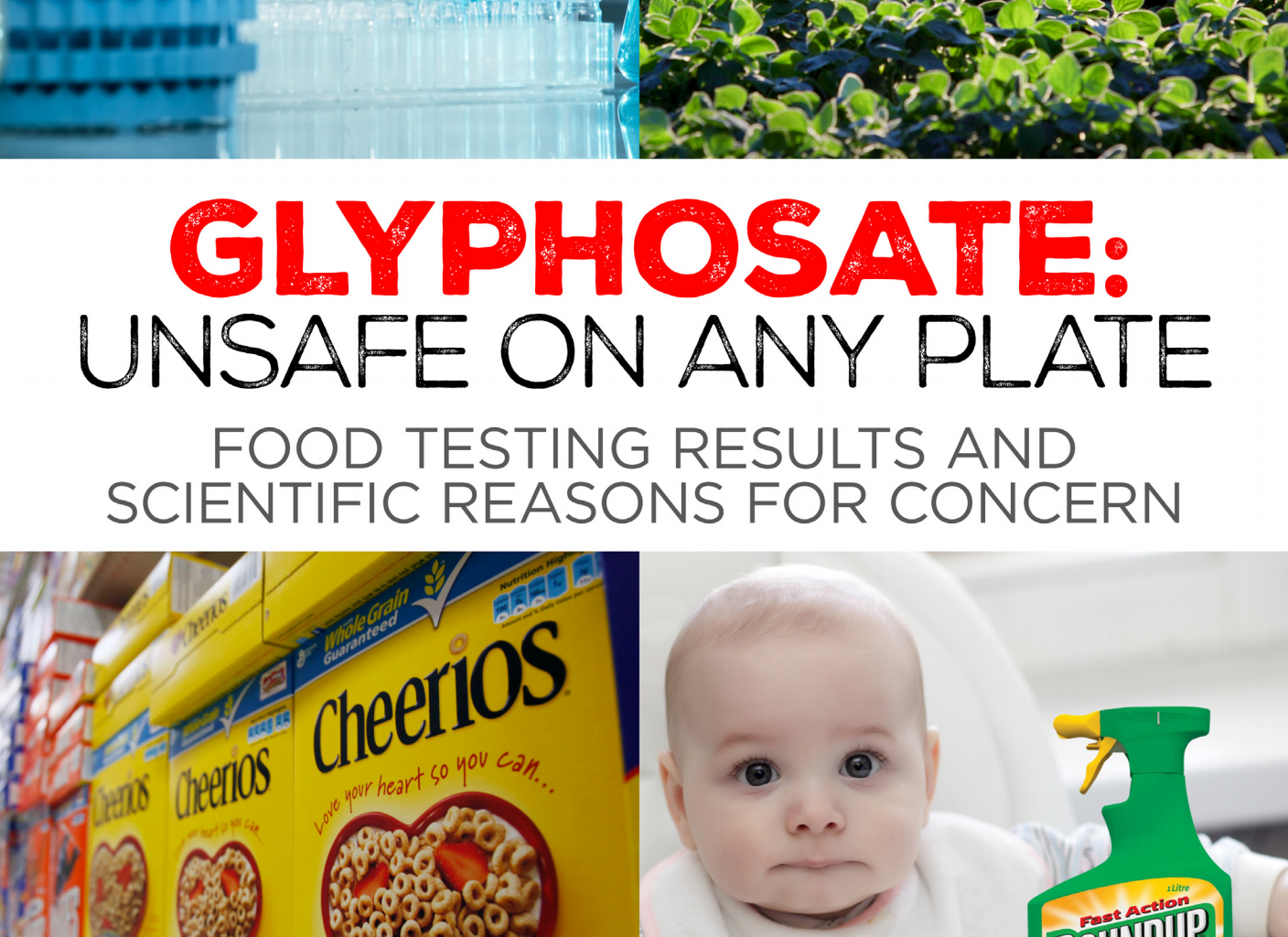 GMO's Unsafe on Any Plate
