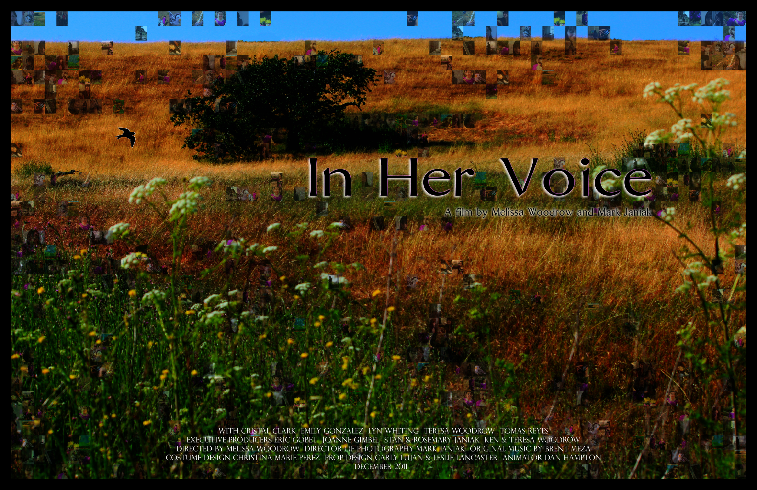 InHerVoice_movieposter.jpg