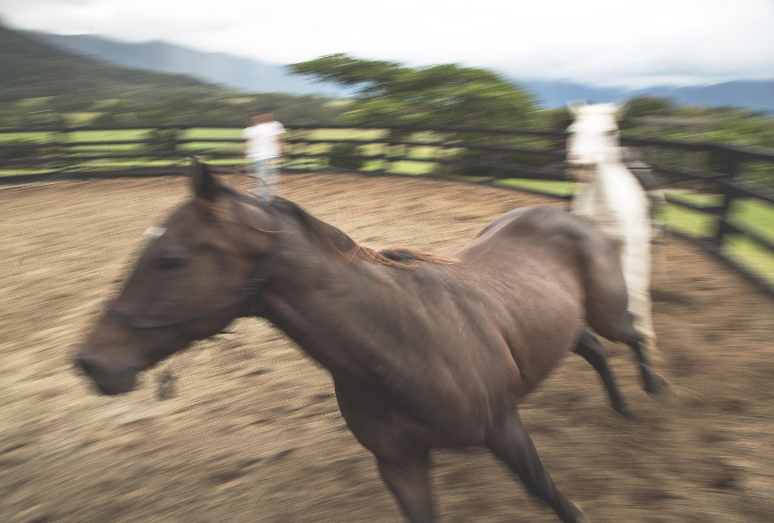 20180310_ABAdur_The Ranch Byron Bay New Edit_044.jpg