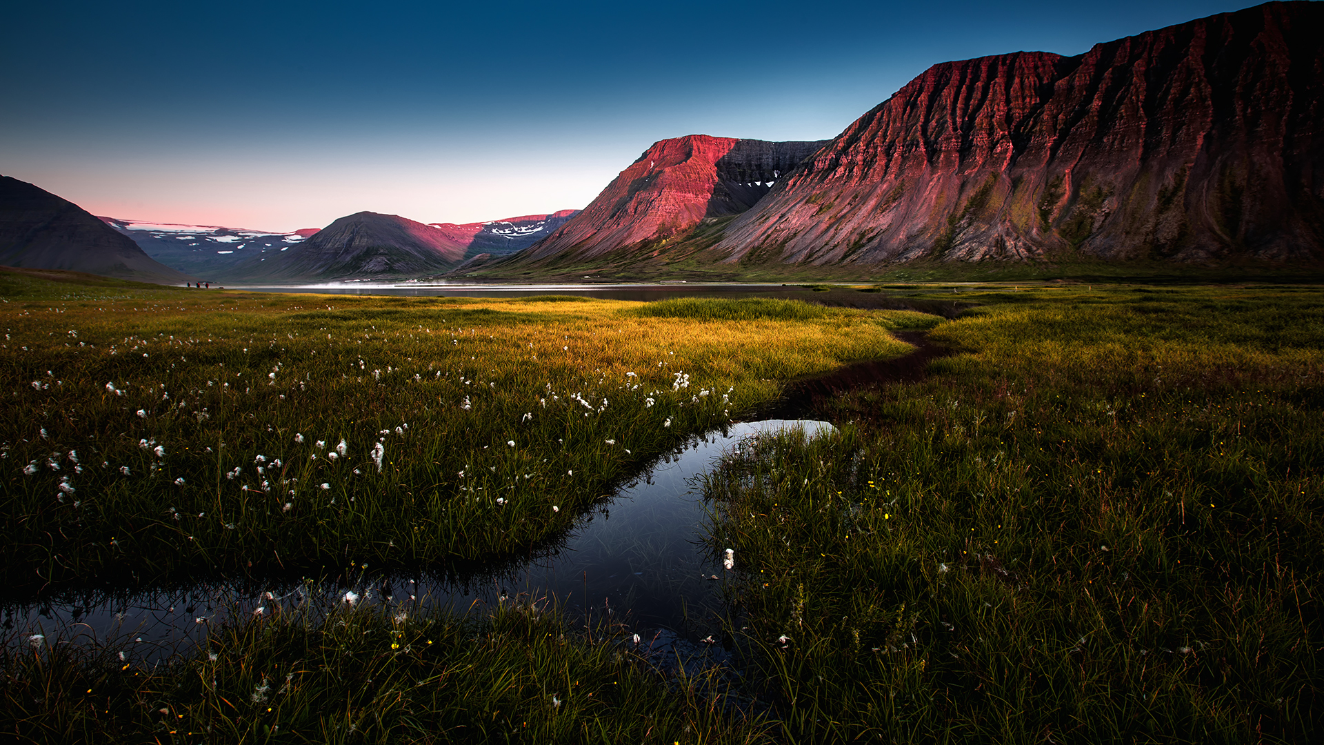 West Fjorden, WIm Denijs