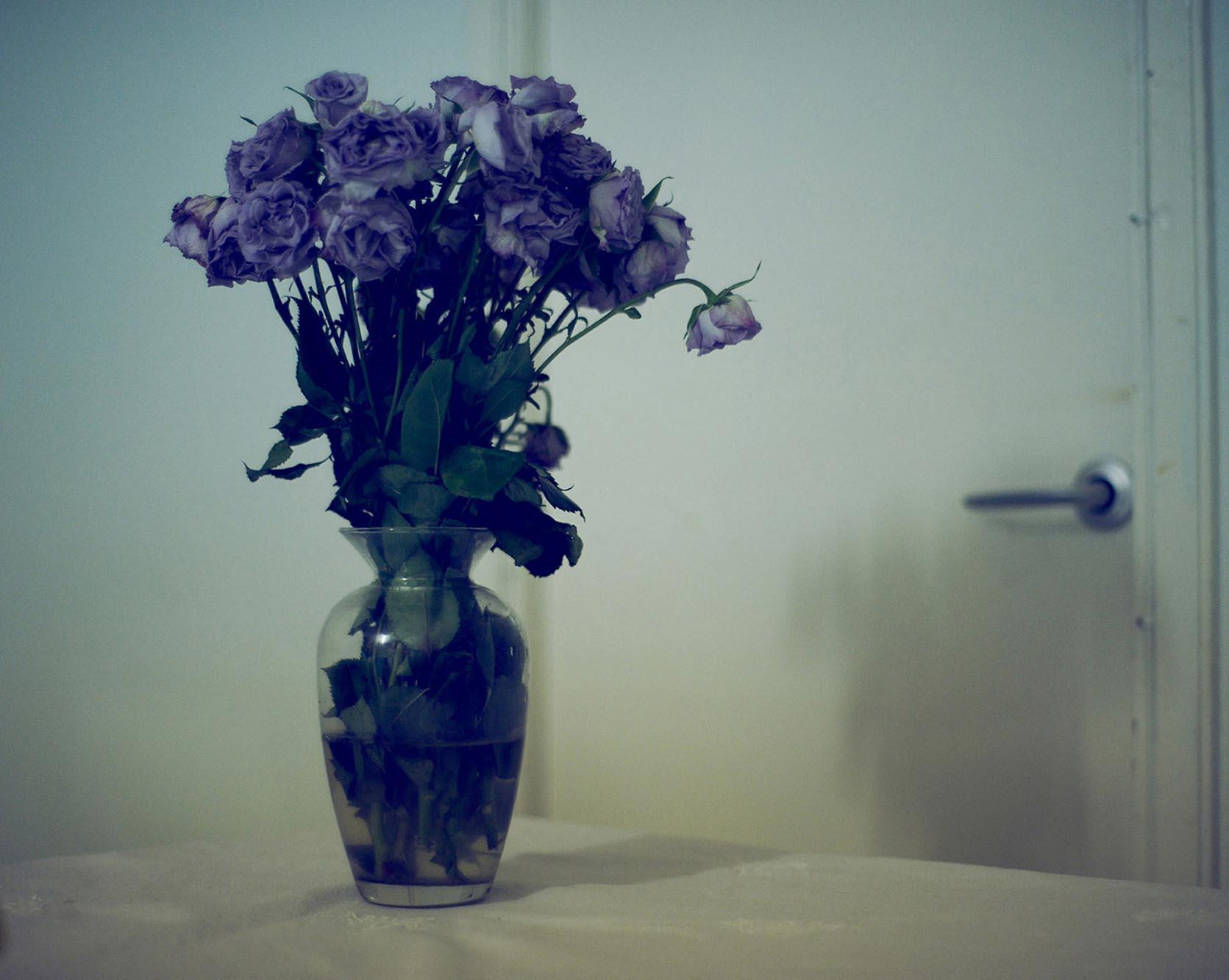 Noel McLaughlin Flowers in Vase