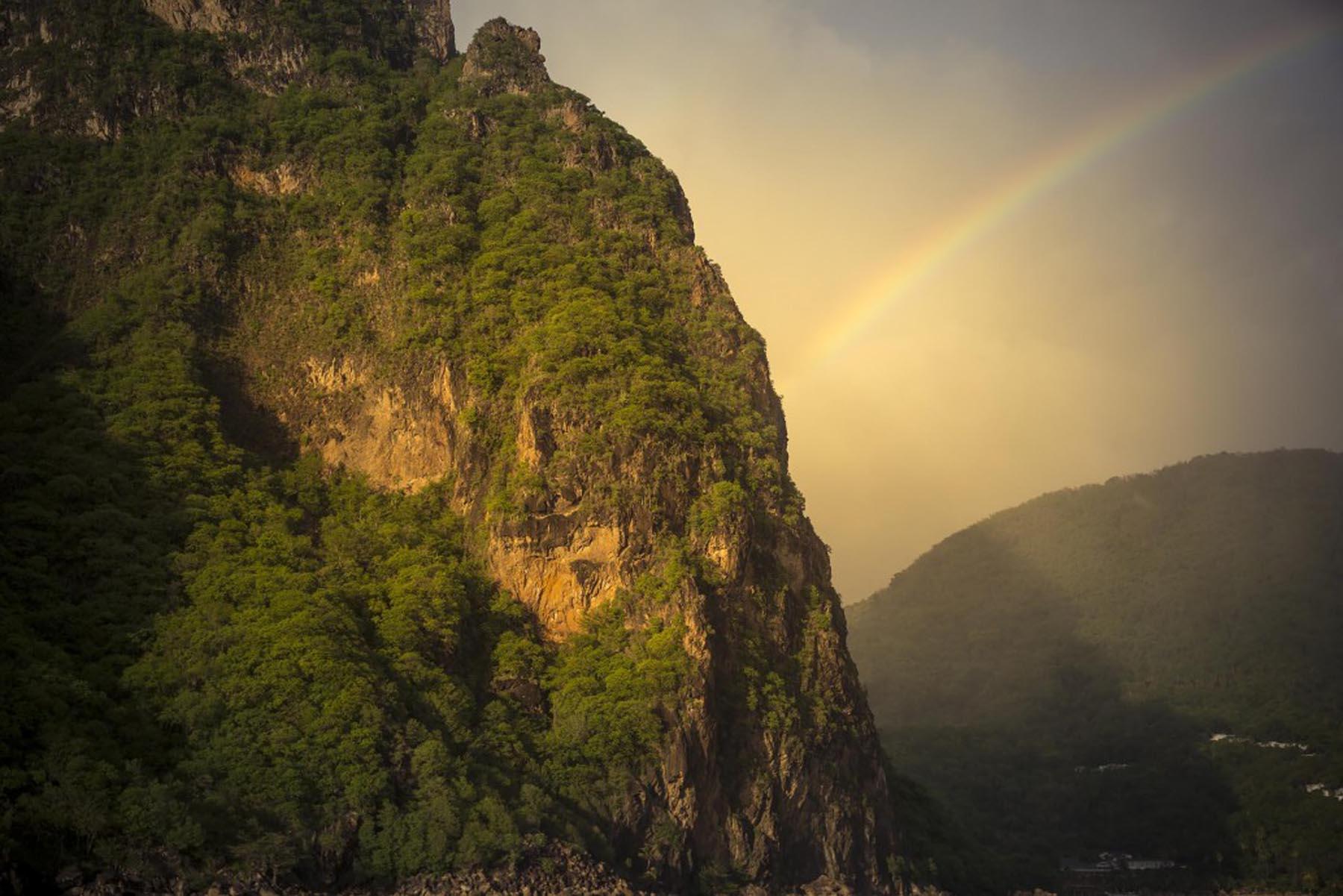 Richard Wadey Rainbow