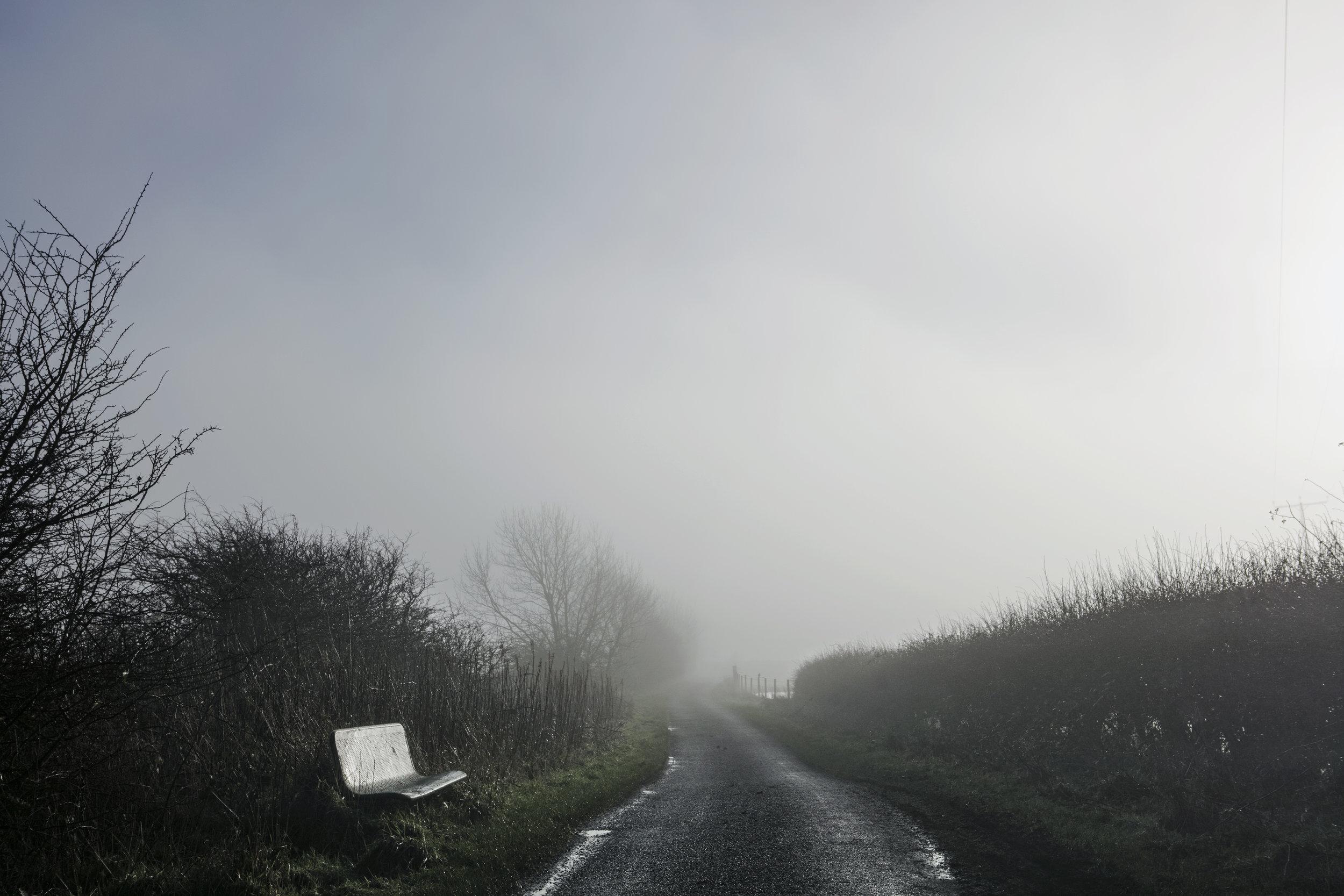 Dan Prince -road in misty landscape