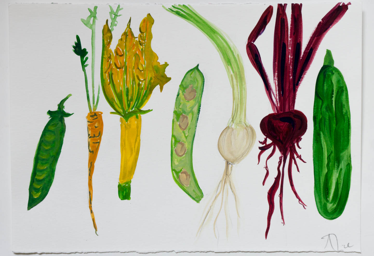 Alice Straker - vegetables