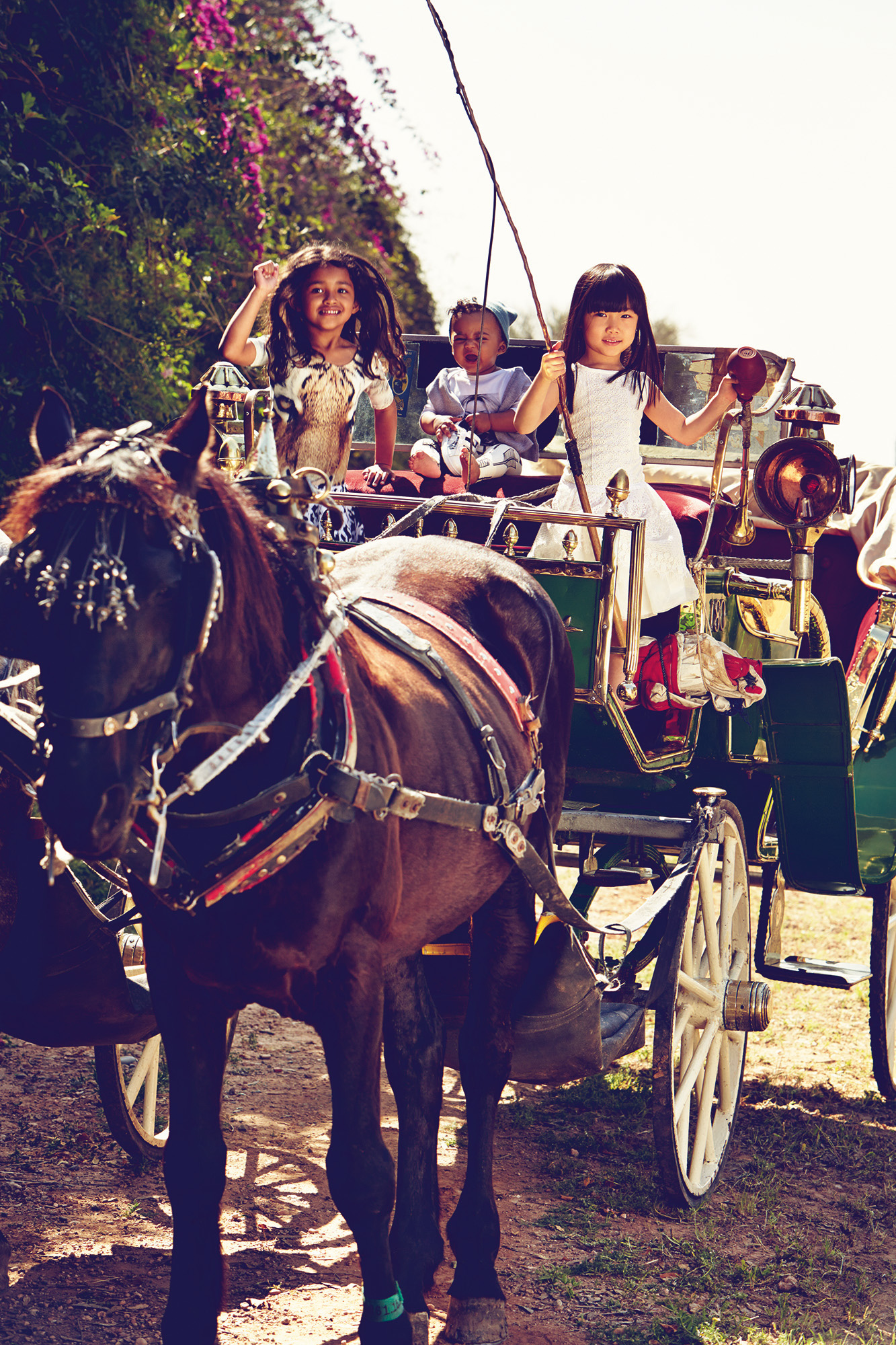 Ilve Little - kids in horse and cart