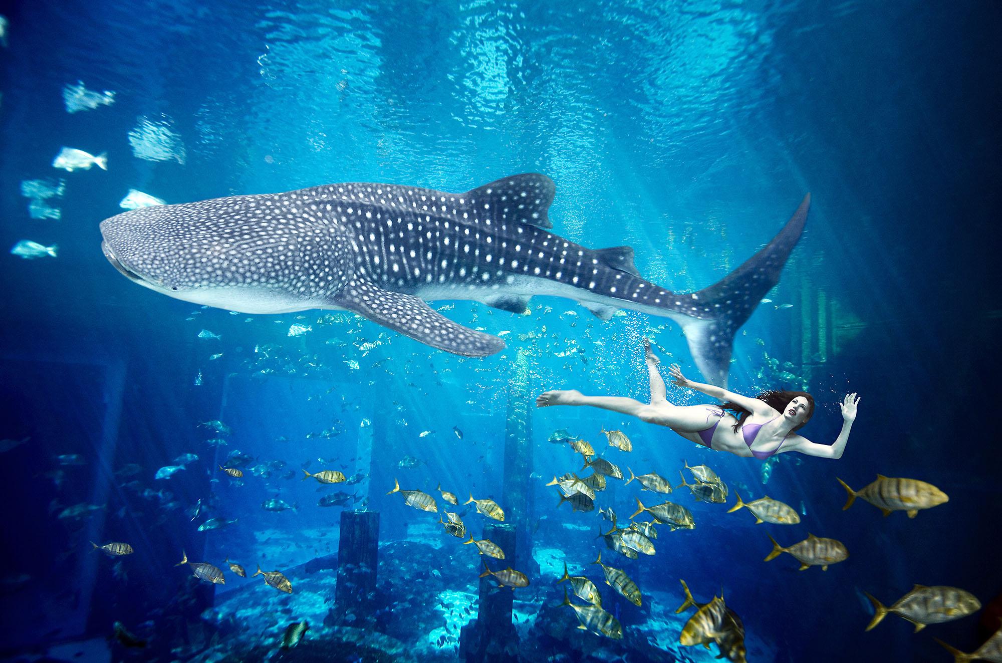 Karan Kapoor girl swimming with fish
