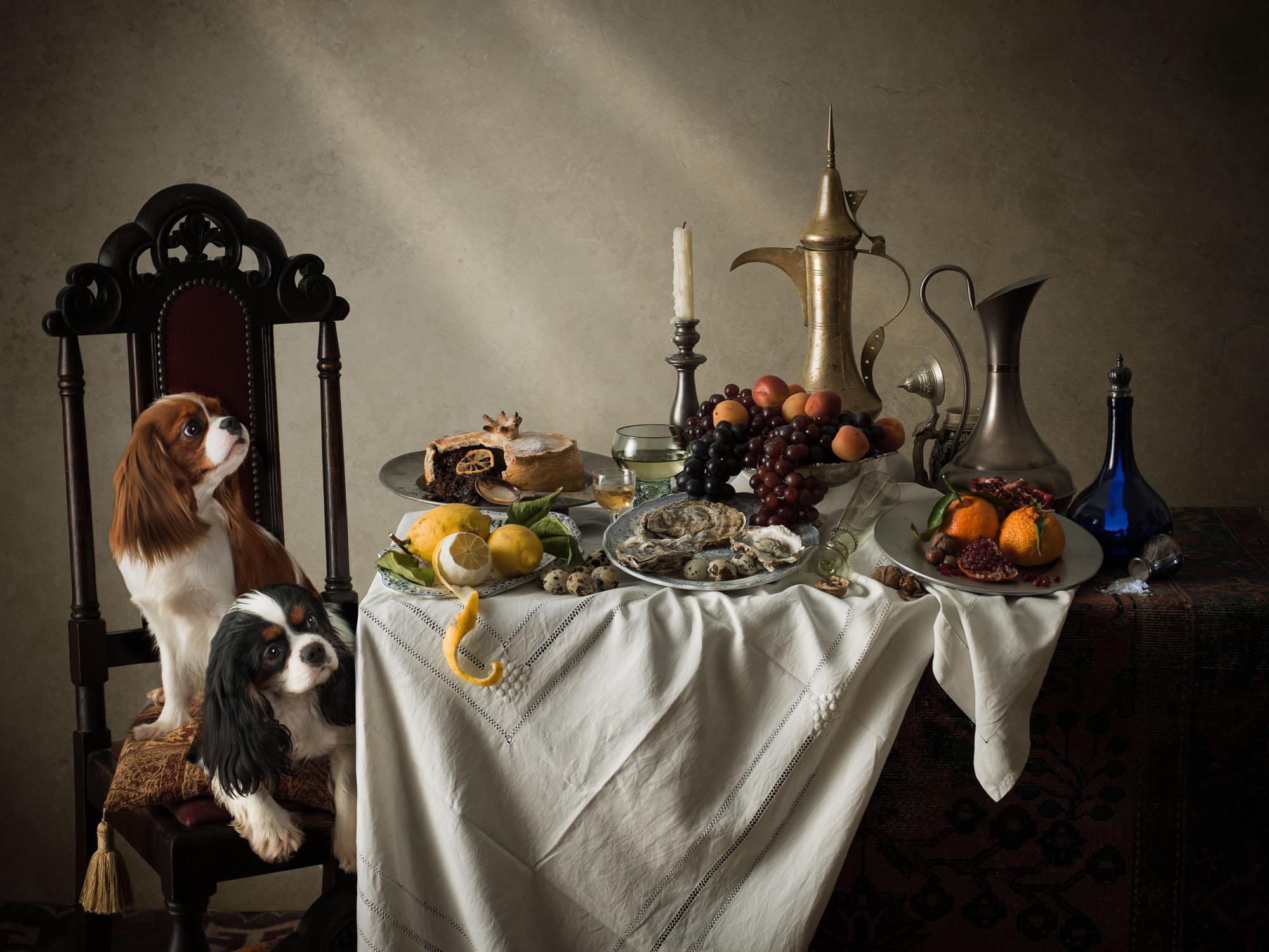 Time Platt - Dog at banquet