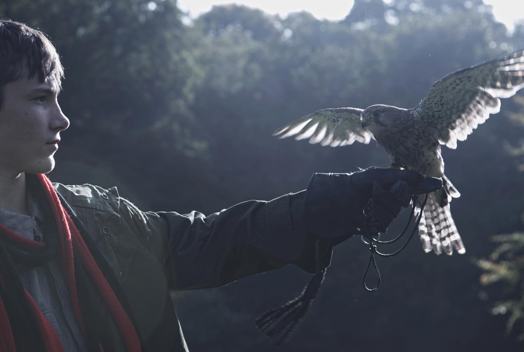 Dan Prince - Kes with his bird