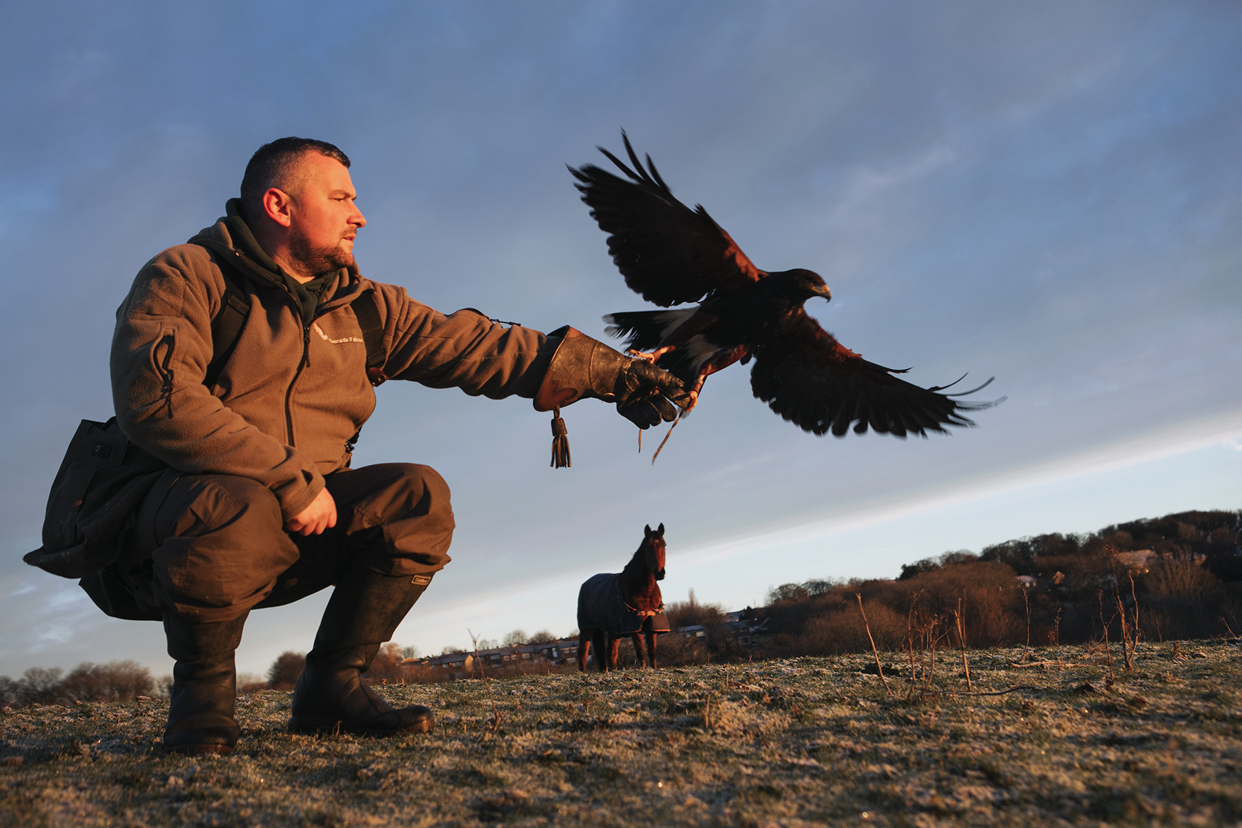 Dan Prince - Man with bird taking flight