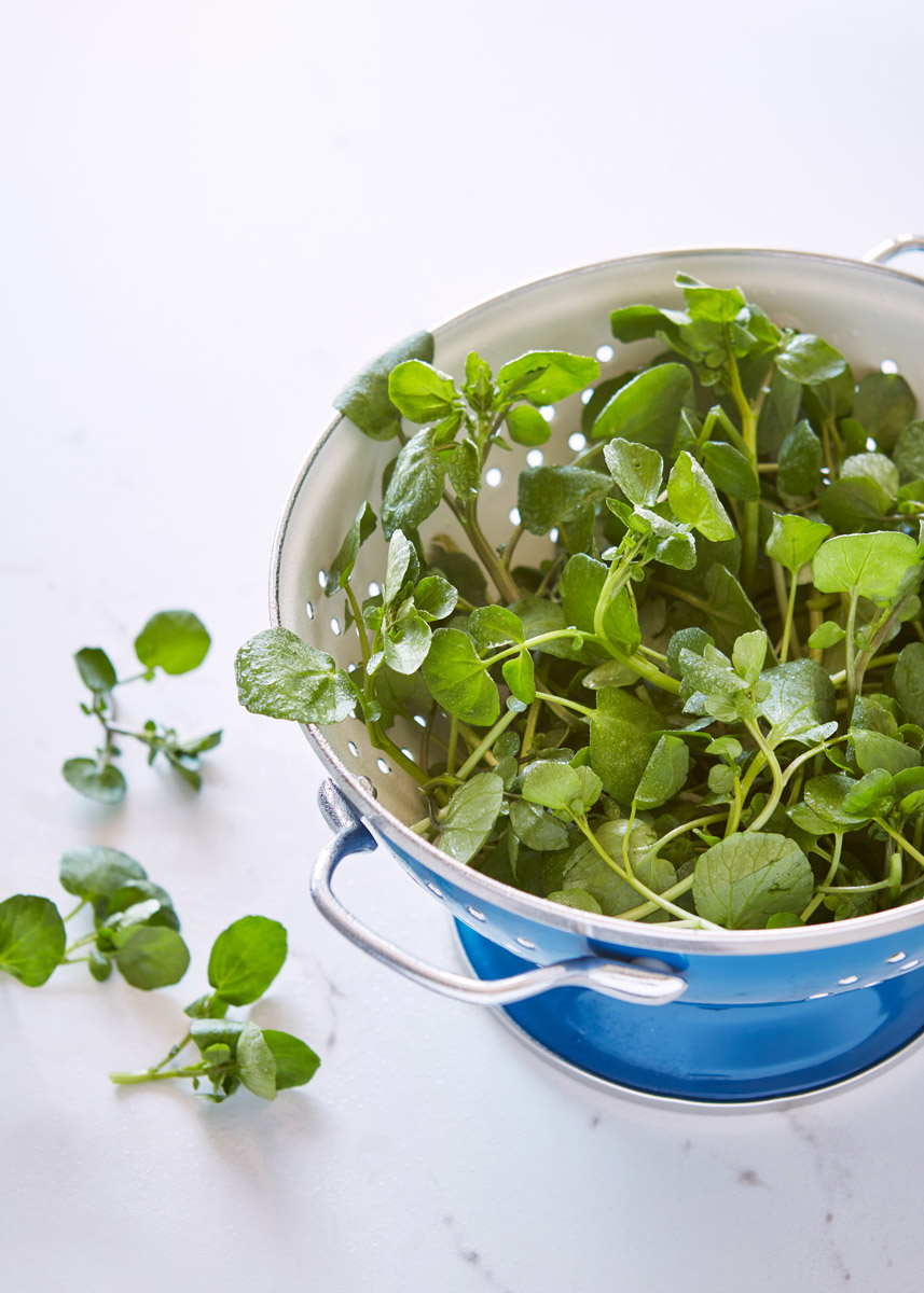 JOS-017-Watercress-in-a-Colander-on-Marble-017.jpg