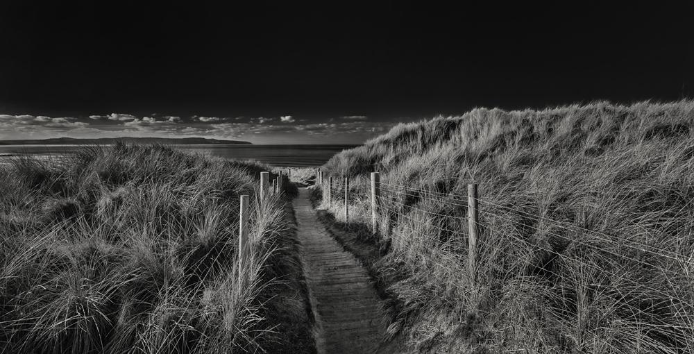 George Kavanagh Path to sea