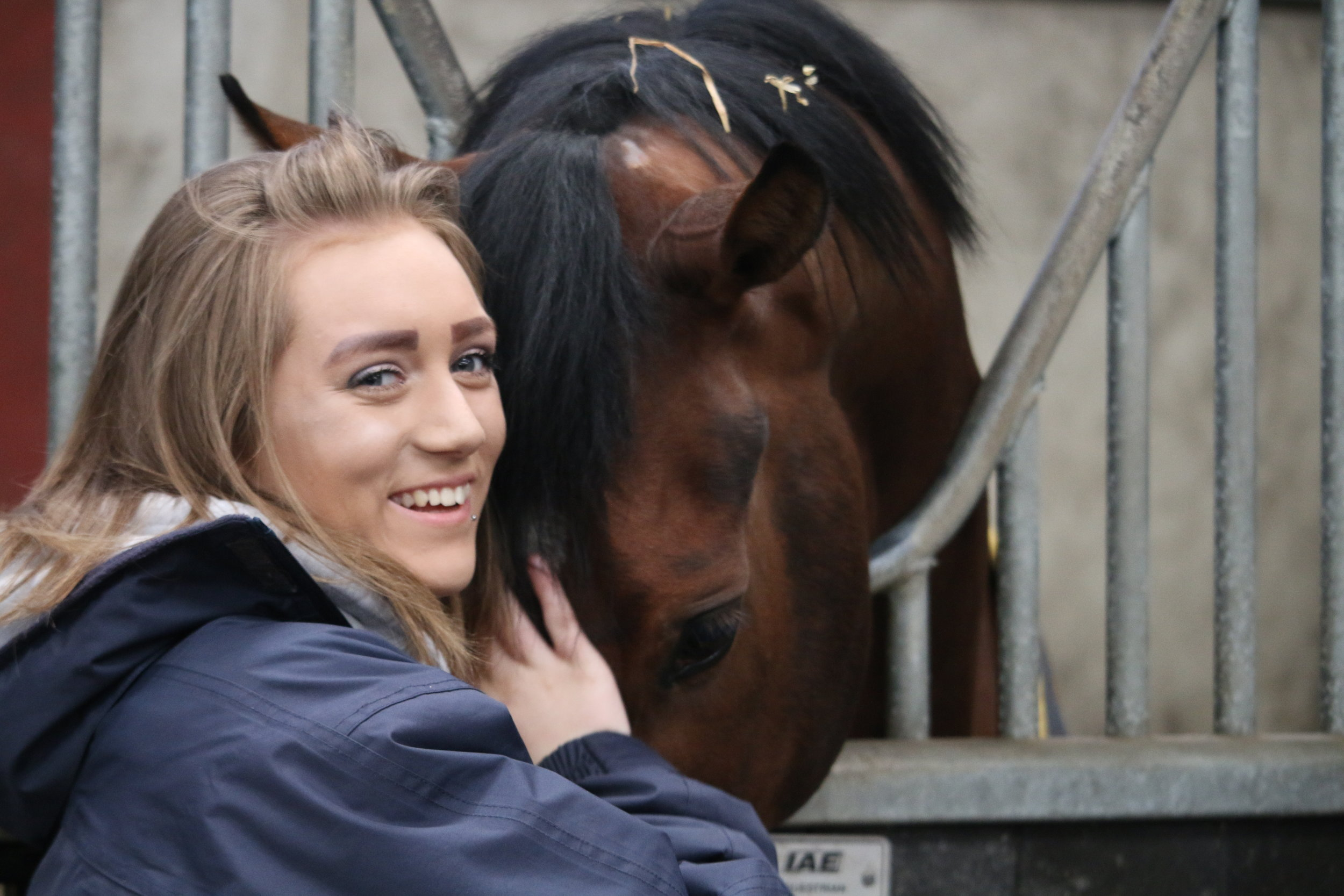 Review of Take The Reins - By Jenny Frost, Communications and Events Manager