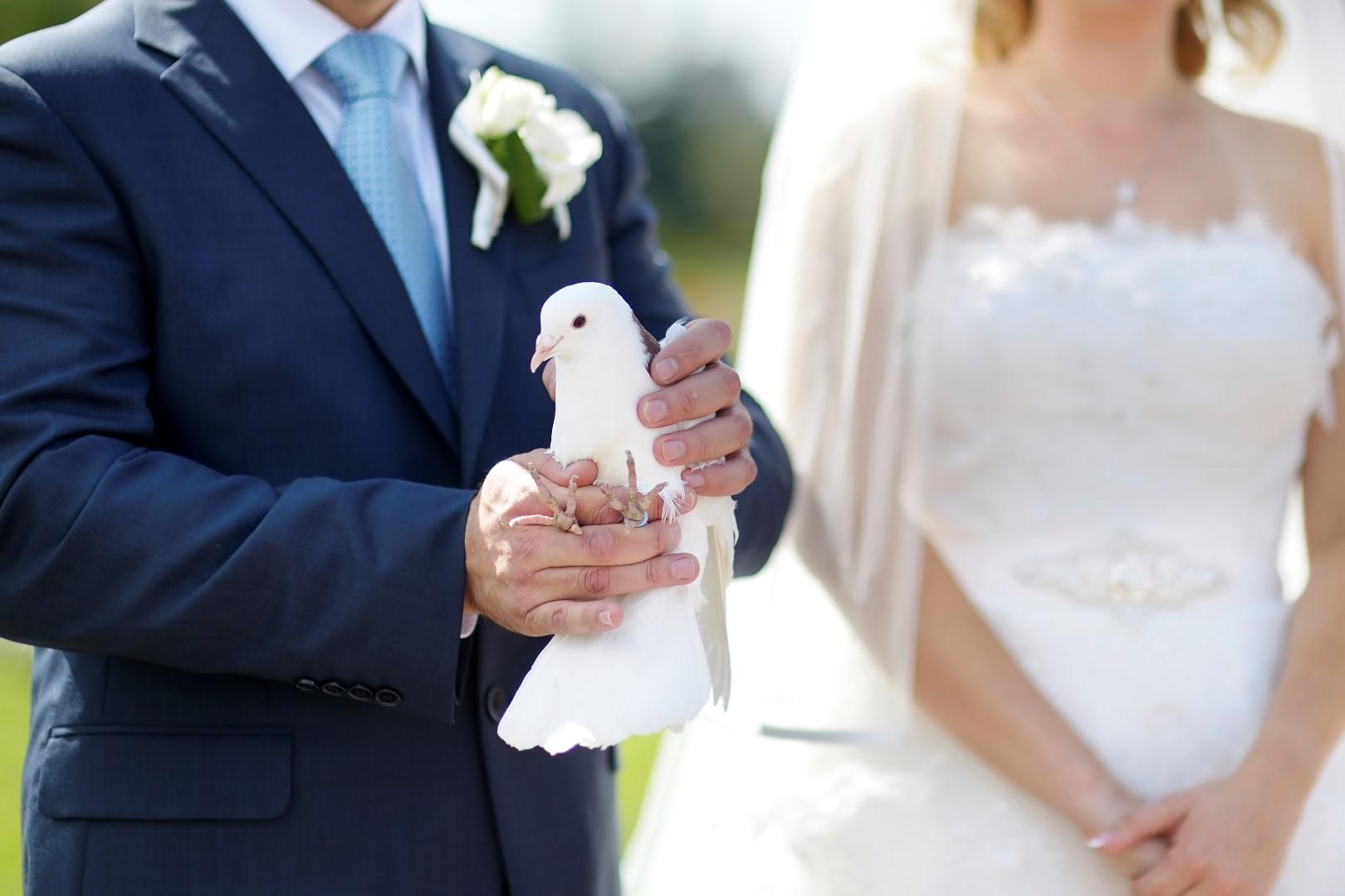 Dove Release Ceremony