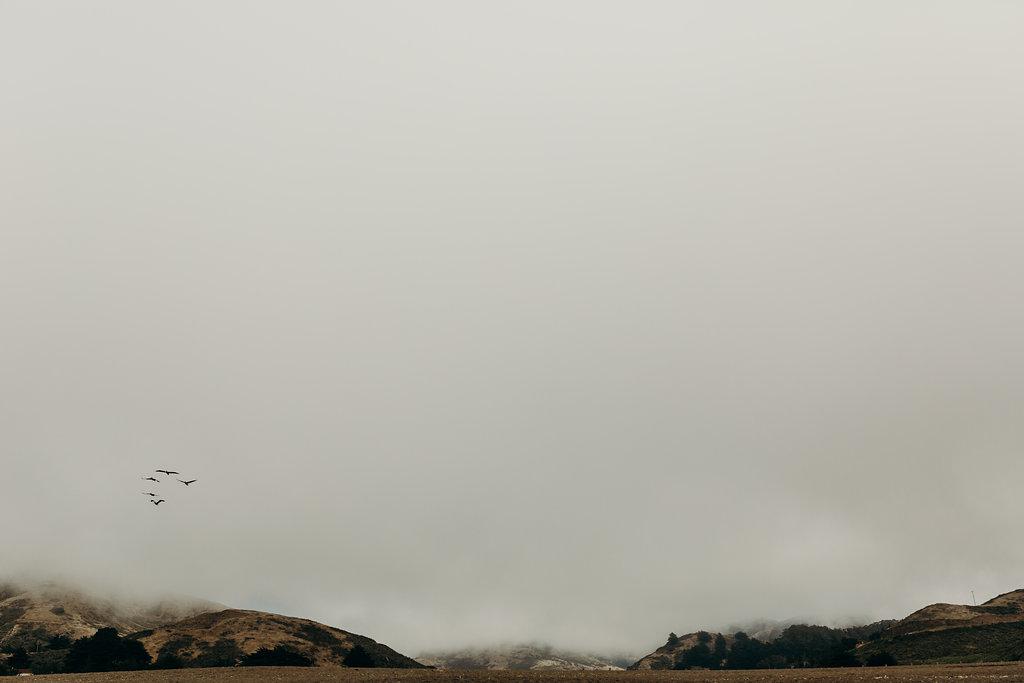 California-182.jpg