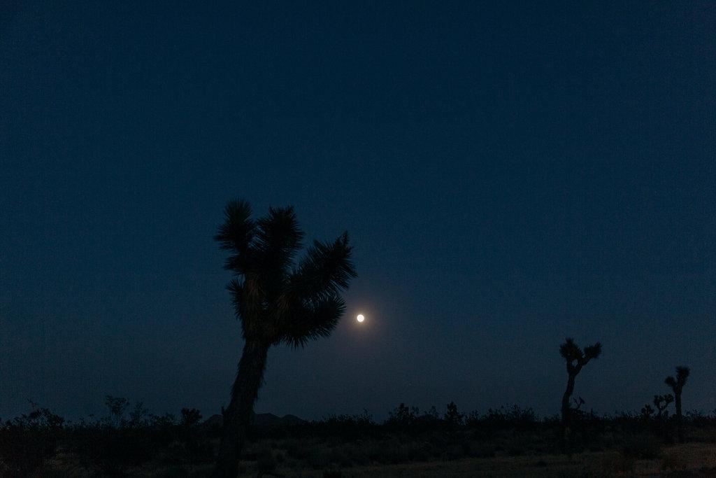 California-975.jpg