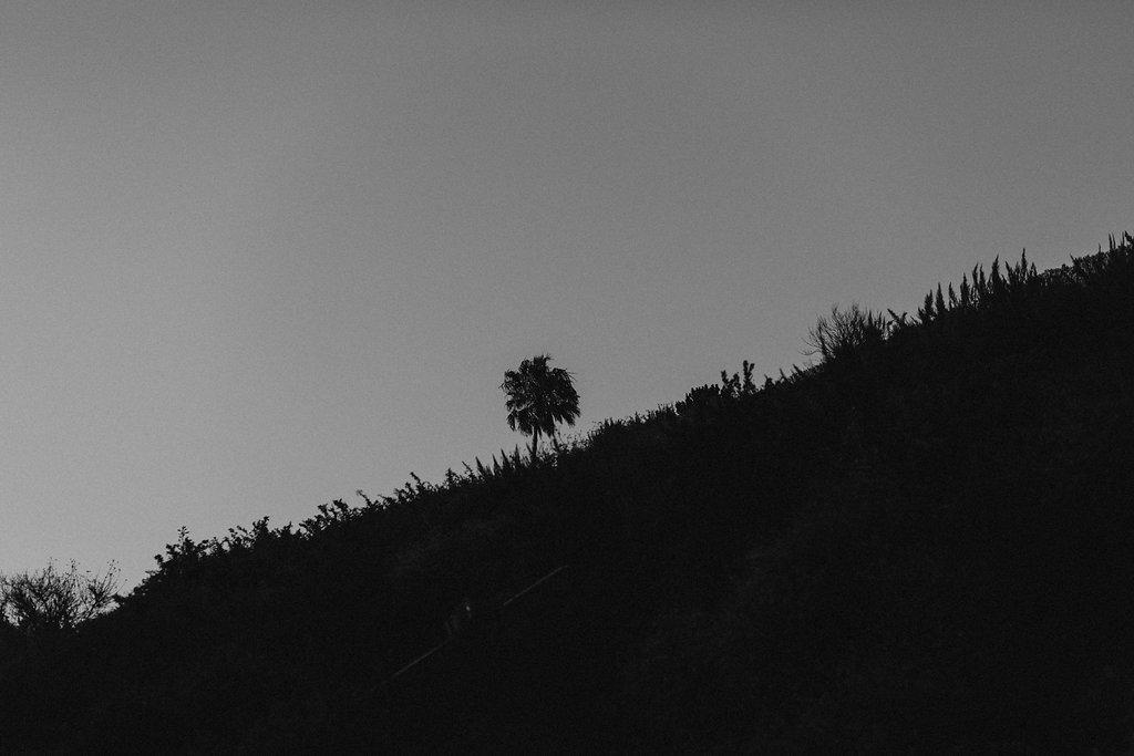 California-1039.jpg